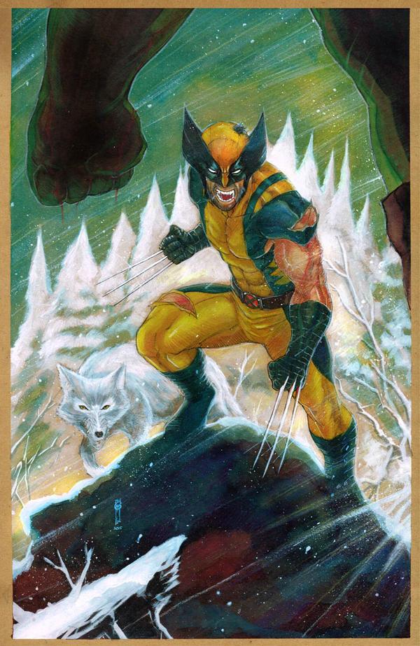 Wolverine vs by Thegerjoos