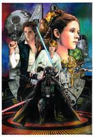 Star Wars Fans Art by Thegerjoos