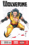 Wolverine Battle Damage