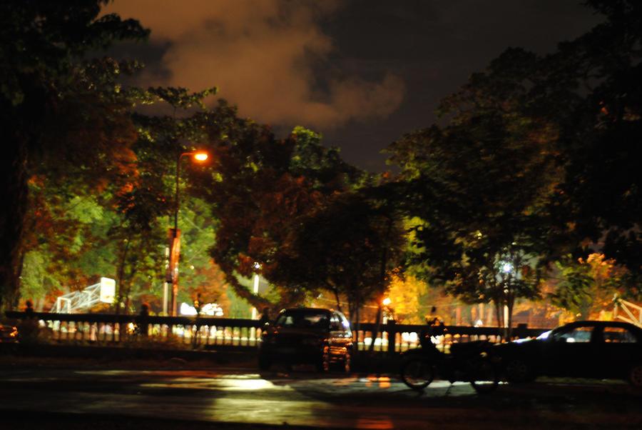 nocturnal forays by ninjaturtlestew