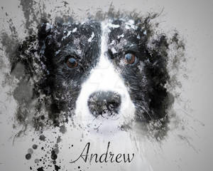 Andrew - Ink Effect