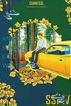 [NO PSD] SSFW PCY postcard@EXO