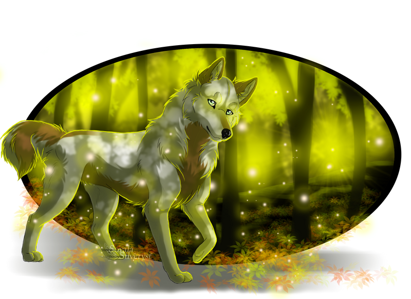 Clearing in the forest by Soyala-Silveryst