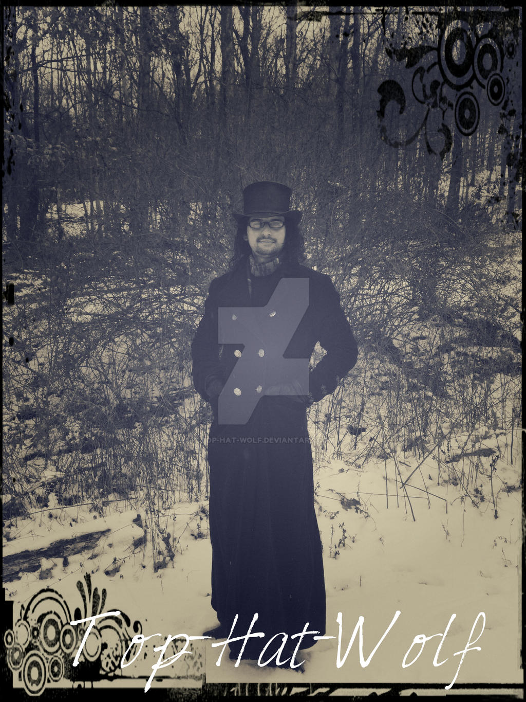 Top-Hat-Wolf's Profile Picture