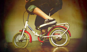 old bycicle new love II