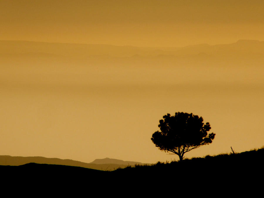 Stand Alone by nutzi66