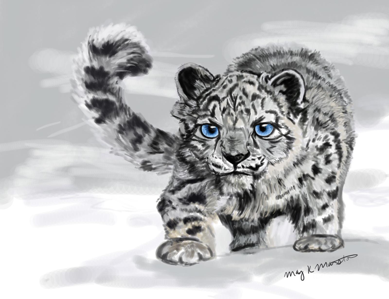 Snowshoe The Snow Leopard By Mkmars On DeviantArt