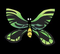 Birdwing Butterfly by ShiroAC