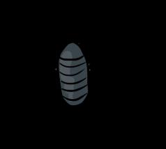 Pill Bug by ShiroAC