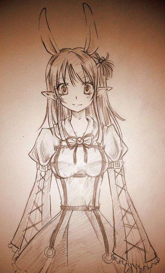 Primrose Sketch by careko