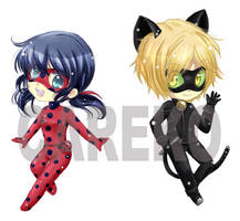 Miraculous Ladybug and ChatNoir by careko