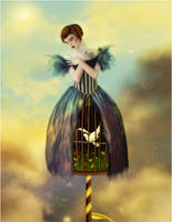 Birdcage by lryiu