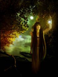 Koa's wish lantern by lryiu
