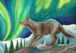 Wolf's Aurora