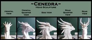 Cenedra: Head Sculpture