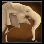 May 2012---Asian Elephant