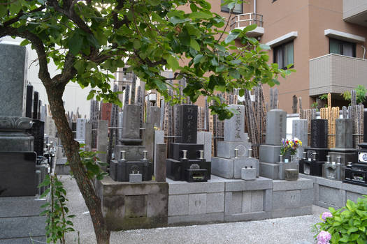 Tokyo Graves