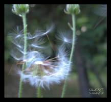Dandelion - Fly Away by silentsawer