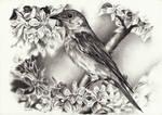 Birdie Bird Bird