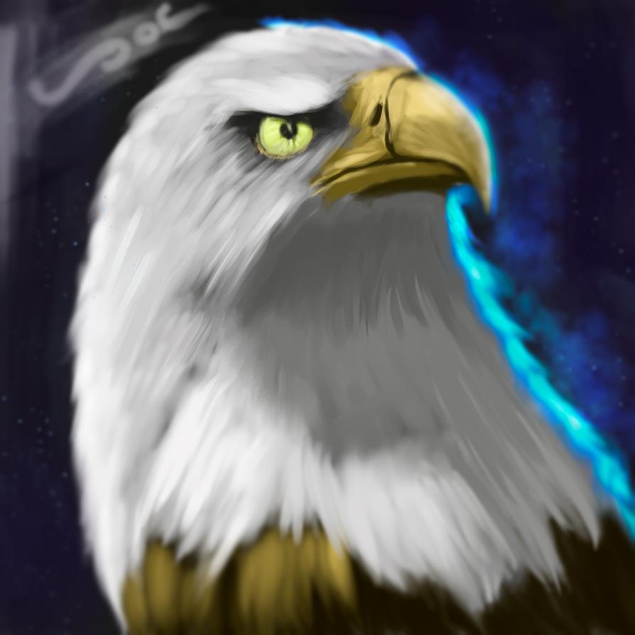 Eagle by AndrisSaputra