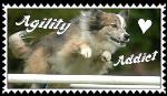 Agility Addict Stamp 2 by SnowWhitesAngel