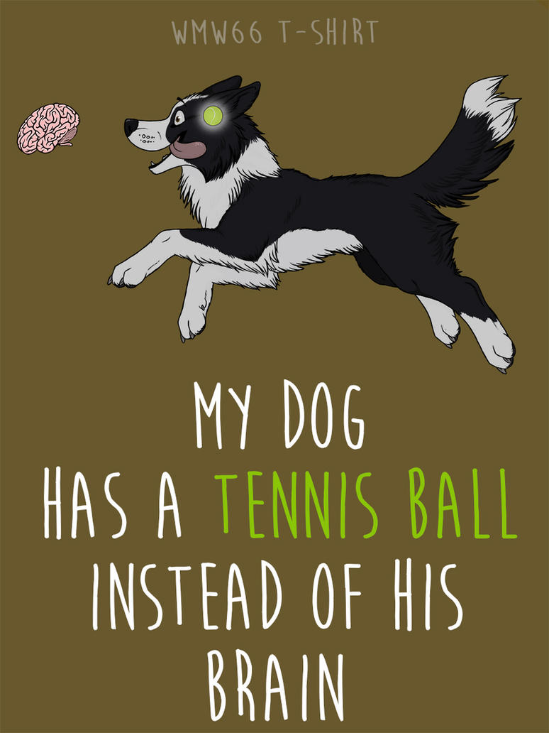 Tennis ball - border collie by Vlcek
