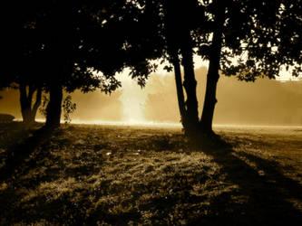 Fall Dawn by Awestrike