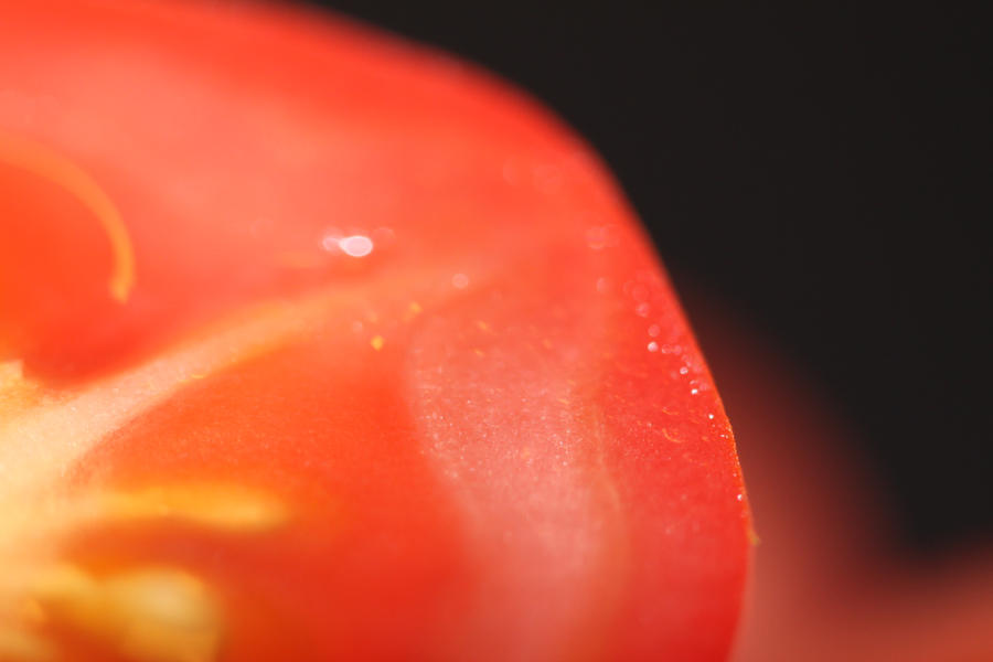 Tomato on black by Bozack