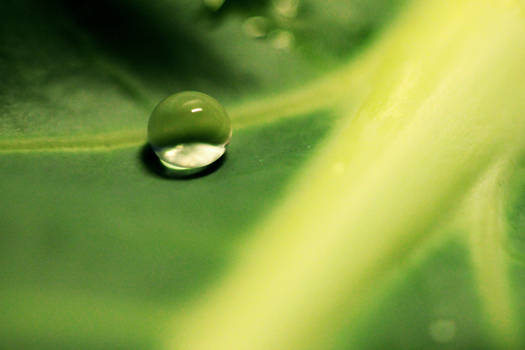 Superhydrofobia