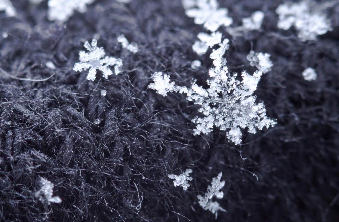 Snow flake by Bozack