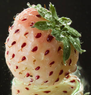 Strawberry droplets III