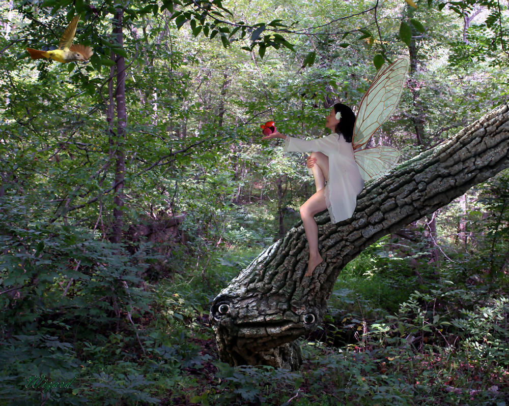 Daydreaming in the woods by dreamweaver69 - The hideout in the woods an artists dream ...