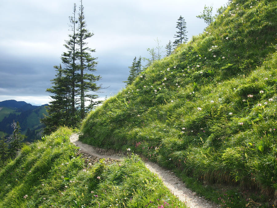 Image result for mountain path