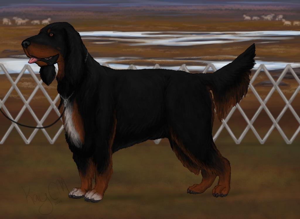 TKC World Dog Show September 2014 - George by KayCMatter