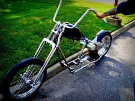Turtbike11 By Reclaimedartva-d7r6xta by skatelifeva
