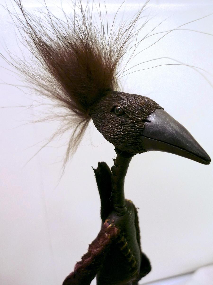 Birdthing - Christopher - 1 by bleaknimue