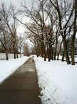 Winter on the bikepath