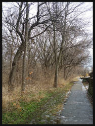 Dreary Winter's Walk by bleaknimue