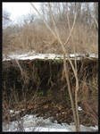creekbank