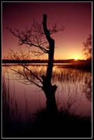 Spring Sunset by gordonrae