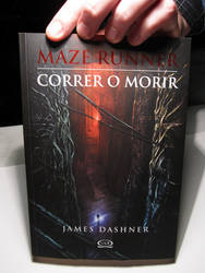The Maze Runner Book Pic
