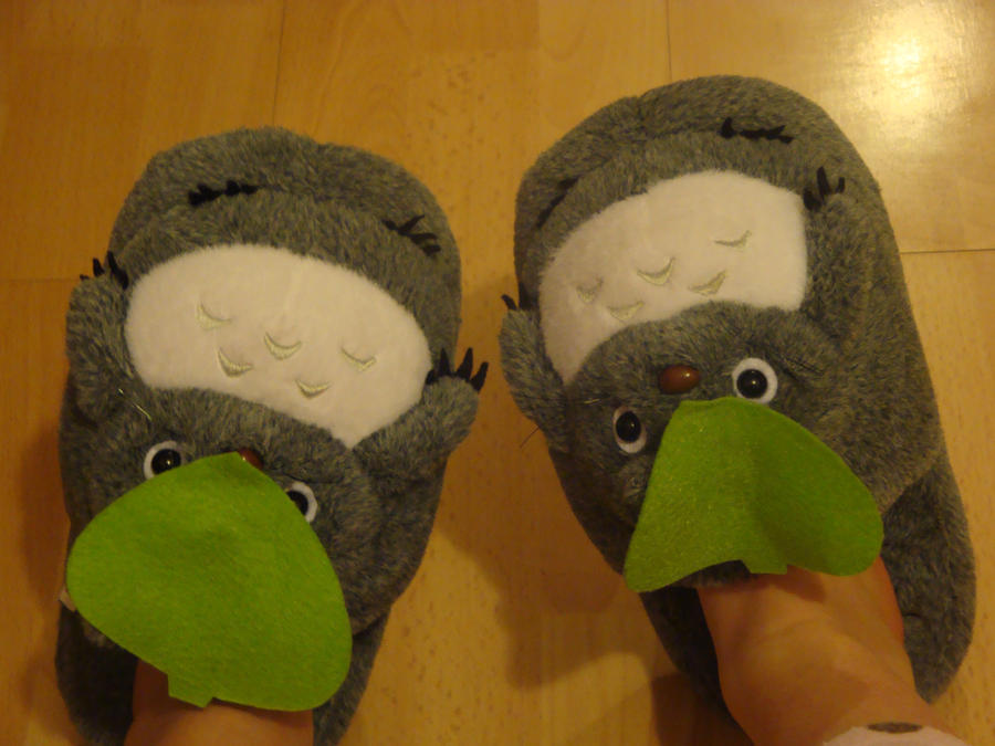 My new Totoro Slippers by XitsxveryxdangerousX