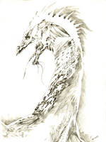 Internal Dragon by Puolukkapiirakka