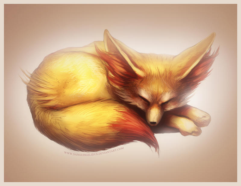 Pokemon X Y starter - Fennekin by sanguisGelidus