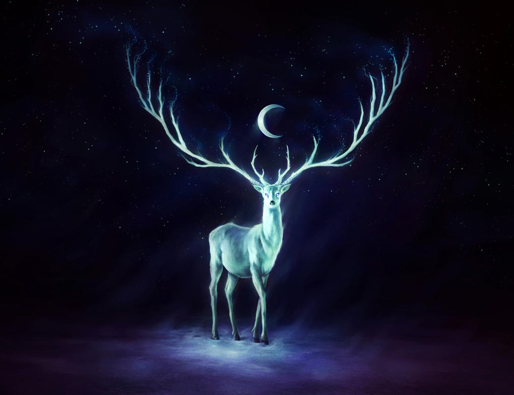 Great Wallpaper Animal Night - night_bringer_interactive_wallpaper_by_sanguisgelidus-d5wleer  Gallery_85346      .jpg