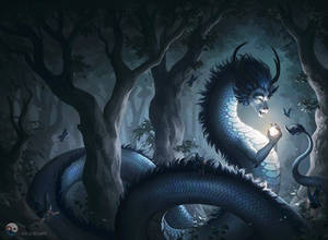 Forest Dragon Book Cover