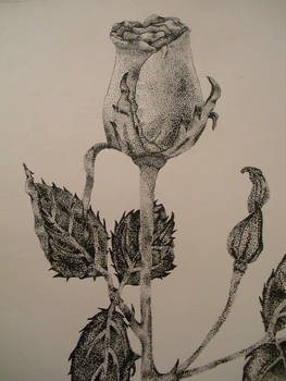 pointillism with pen and ink