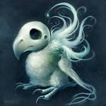 Rotund Skullbird