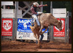 Rodeo Days 6.0
