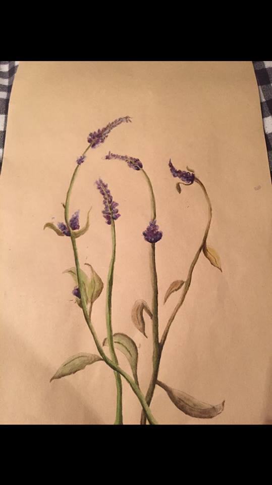 lavender by alexandra133